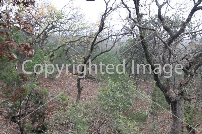 Friedrich Wilderness Park 005