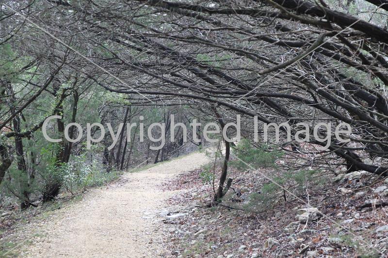 Friedrich Wilderness Park 023