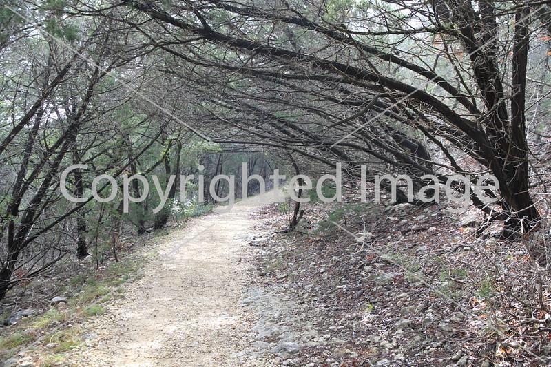 Friedrich Wilderness Park 027