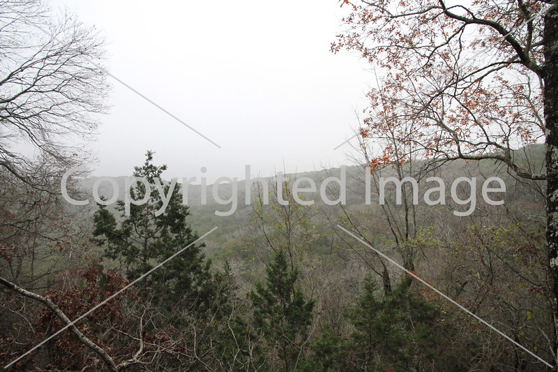 Friedrich Wilderness Park 011