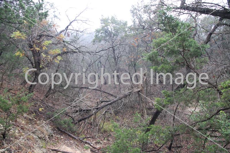 Friedrich Wilderness Park 007
