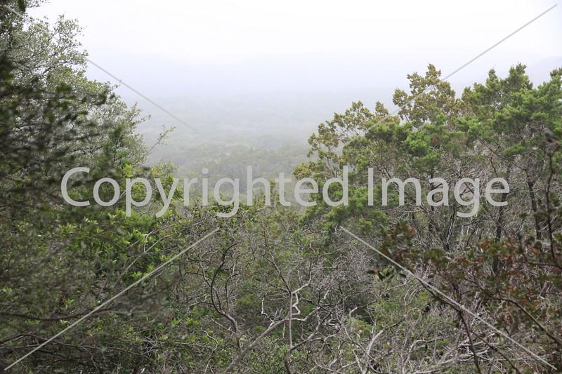 Friedrich Wilderness Park 003
