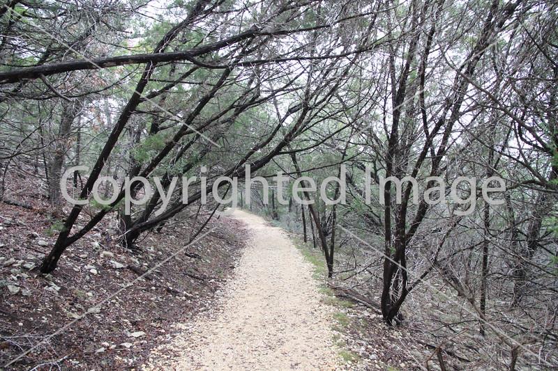 Friedrich Wilderness Park 016