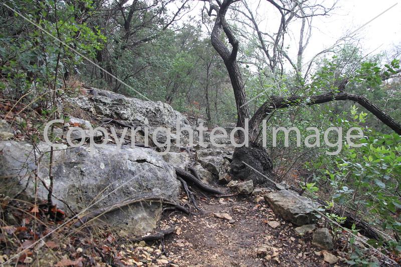 Friedrich Wilderness Park 008
