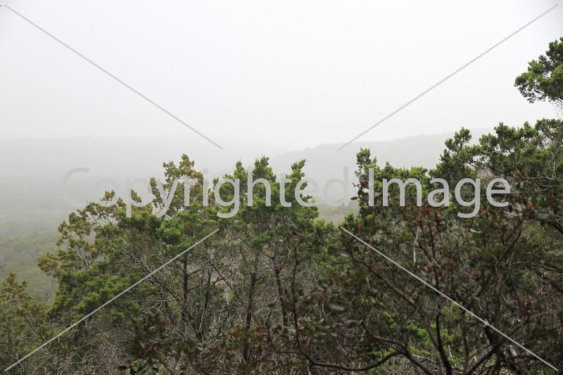 Friedrich Wilderness Park 002
