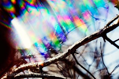 winter prism 3