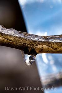 winter prism 2