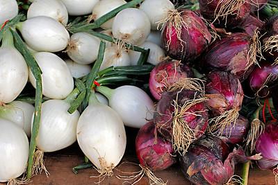 Onions, Rochester, MI Farmer's Market