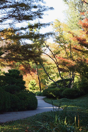 Fort Worth Botanical Gardens 117