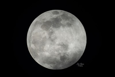 Full Cold Moon 2020, Last Full Moon of 2020