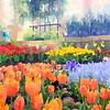 Rawlings Spring 2