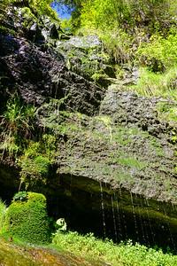 Dripping rocks by Schwarzwasserbach in Kleinwalsertal, Austria