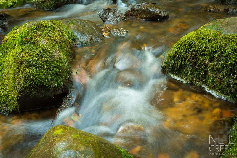 creek-141025-118.jpg