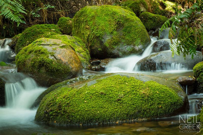 creek-141025-115.jpg