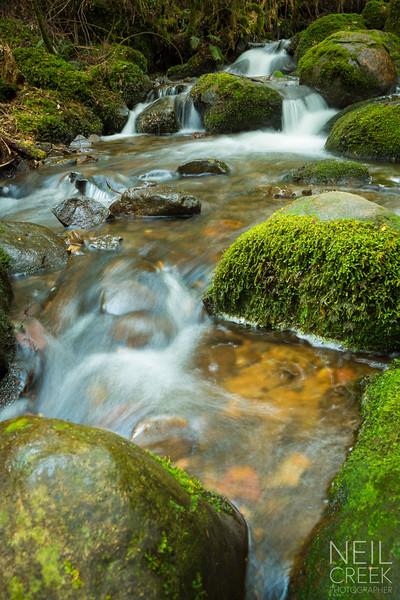 creek-141025-120.jpg