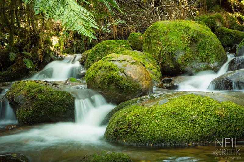 creek-141025-116.jpg