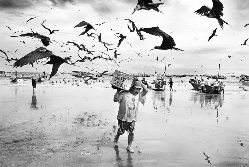 Fisherman with Frigate Birds.This picture won first prize in the Professional Photographer of the Year (2008) - Editorial Category. Taken at Galapagos Islands.