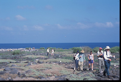 Galapagos2002-099