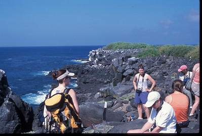 Galapagos2002-100