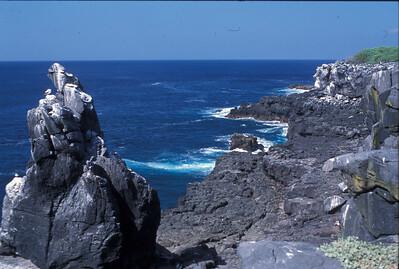 Galapagos2002_77