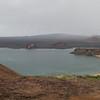 Galapagos (29)