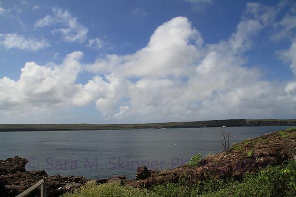 Galapagos (10)