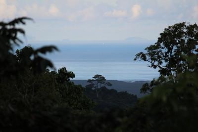 Landscape from Santa Cruz island - the most lush island.