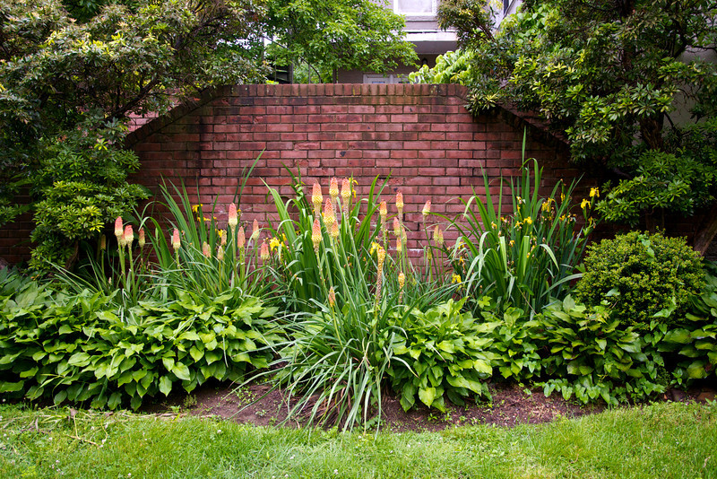 Garden late May 2012  50983