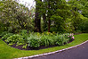 Garden late May 2012  50992