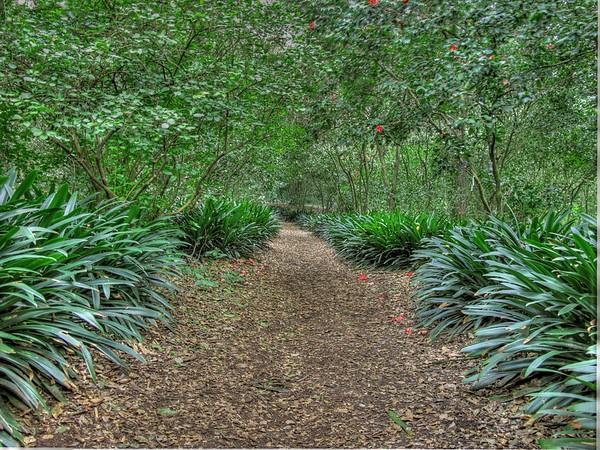 Descanso Gardens & Serrano Creek