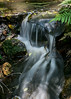 While walking around I saw this small waterfall which I never saw before.  This photo was exposed with a 1.3 second shutter.  And camera was held against a handrail to steady it.