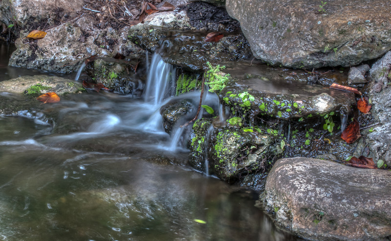 This is a mini waterfalls on the left side of the entrance to McKee Botanical Garden.