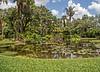 Pond as you enter McKee Botanical Garden