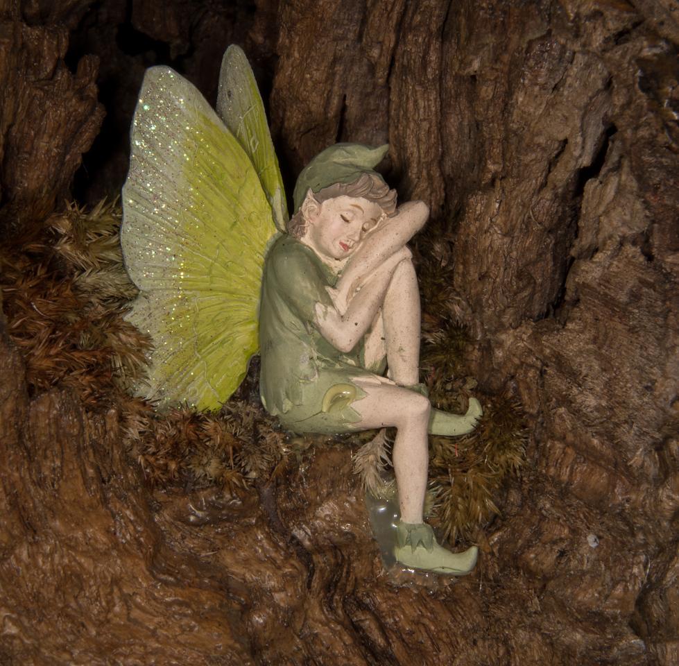 • Location - Rockledge Gardens<br /> • Ceramic Peter Pan sculpture