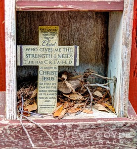 Captured this shot earlier in the week, but held on to it til Sunday given the subject matter. Looks like someone is taking up residence behind the cross in our birdhouse shelving.