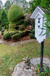 Topiary Zen