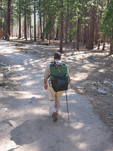 With full packs and wilderness permit (no problem getting one without a reservation, BTW), we head east from Road End for seven days of hiking.