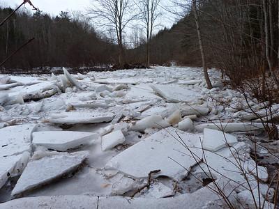 Ice Jam on Gaspereau River Feb. 1, 2013.
