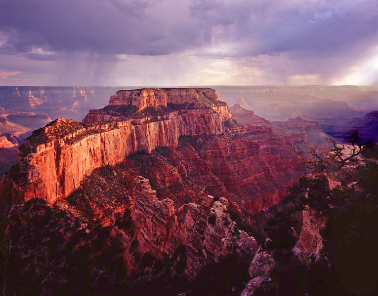 Cape Royal, on the North Rim of the Grand Canyon, during a rainstorm near sunset.  I hate to admit I was standing by a 6' metal tripod, hoping for lightning.  Only a photographer would be that wierd.