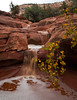 Water cascading down from the Seven Sacred Pools in Sedona, after a brief rainstorm.