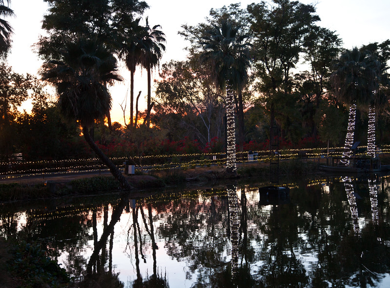 Sun set at the Phoenix Zoo, waiting for Zoolights 2012 to begin.  This was the 50th anniversary of the Zoo.