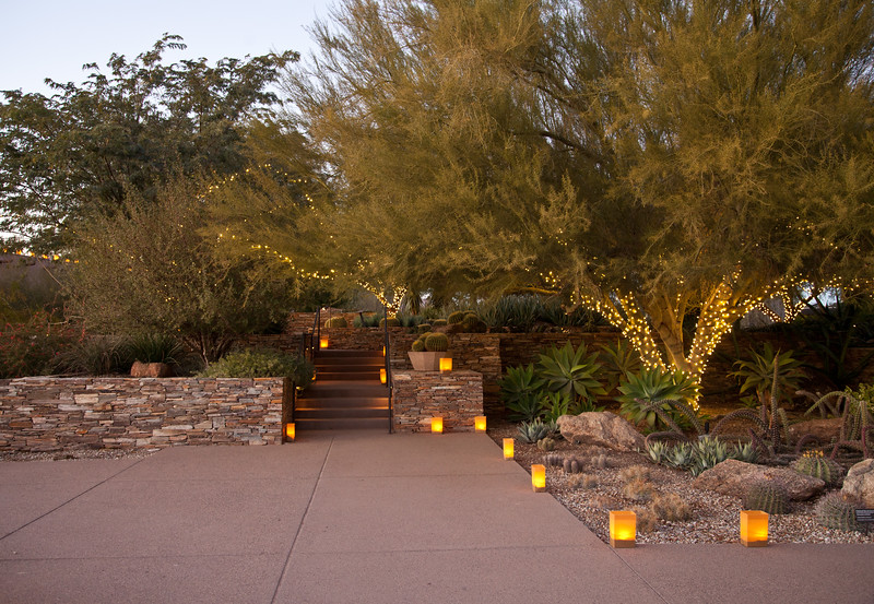 Luminarias at the Desert Botanical Garden at sunset, Dec 2012.  I would love this for a backyard.