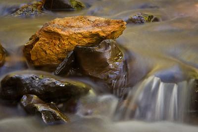 Purisma Redwoods-1