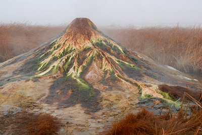 Geothermal geyser spews boiling hot water into a climate-controlled zone, keeping winter's ice and snow at bay, allowing amphibians to live at the temperate fringes year round.