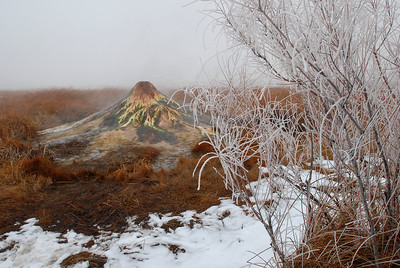© Joseph Dougherty. All rights reserved.   Geothermal geyser spews boiling hot water into a climate-controlled zone, keeping winter's ice and snow at bay, allowing amphibians to live at the temperate fringes year round.