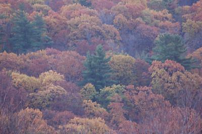 Gile Sunrise_2006-10-14_41
