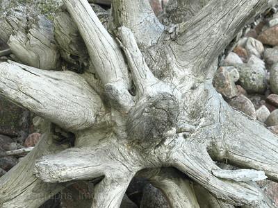 Superior Driftwood