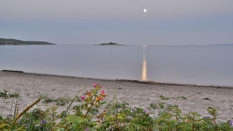Super Full Moon August 2014