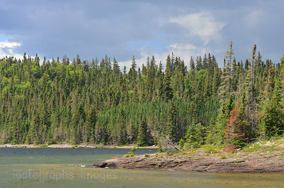 Lake Superior, Fresh Water, Trees,