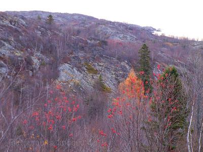 Precambrian Bedrock on Superior's North Shore